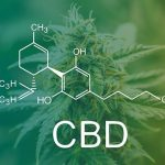 The Addiction of Marijuana – Fiction to Know More