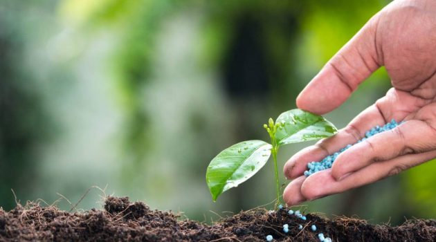 Fertilizer Manufacture Services Are Important To Your Business